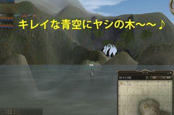 20090128_2.jpg