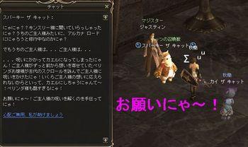 20090130_2.jpg